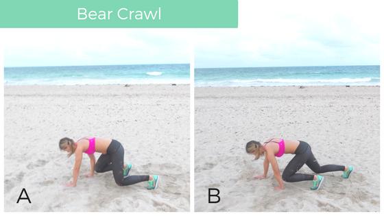 bear_crawl