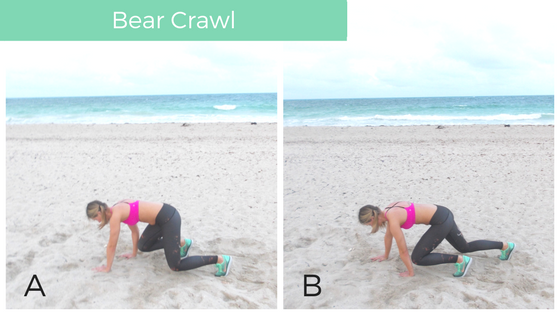 bear_crawl